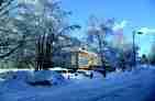 02_kristalsole.jpg